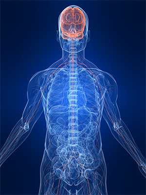 Multiple Sclerosis and Blood Flow